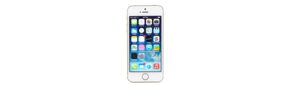 The iPhone 5s