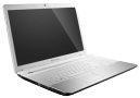 Gateway nv55 Laptop
