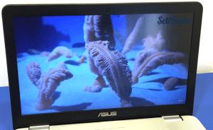 ASUS N551JQ IPS Full HD Display